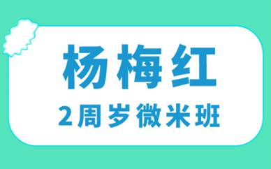 福州鼓楼杨梅红2周岁微米美术培训