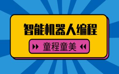 广州花都童程童美乐高智能机器人编程