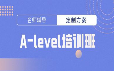 合肥A-Level培训班