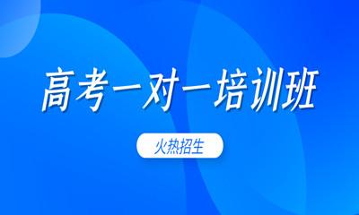 邢台桥西励学个性化高考一对一培训班
