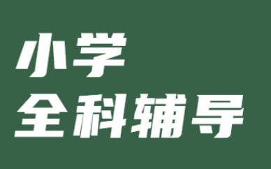 广州番禺金博小学全科辅导