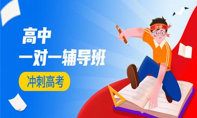 杭州下城纳思高中一对一辅导