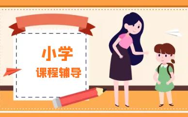 扬州邗江星火小学课程辅导