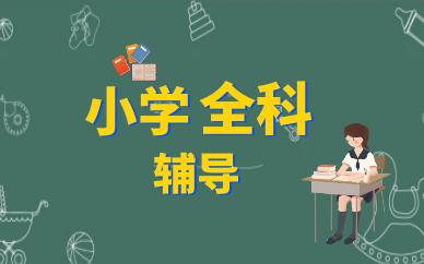 上海普陀小学1对1全科辅导