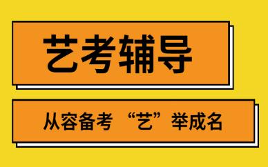 南京纳思艺考辅导课程