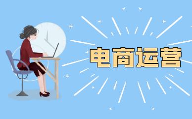 广州海珠天琥电商运营课程