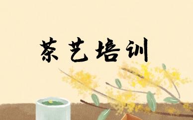 上海闵行金汇秦汉胡同茶艺培训