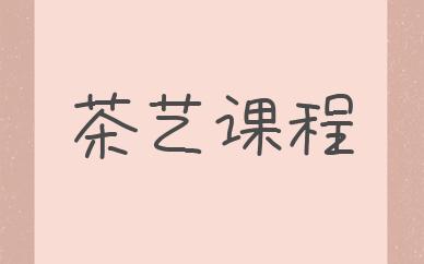 南京江宁秦汉胡同茶艺培训