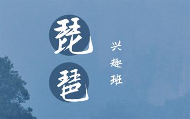 深圳龙华琵琶培训课