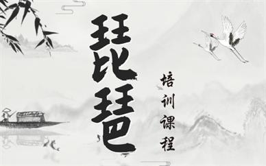 广州荔湾琵琶兴趣班