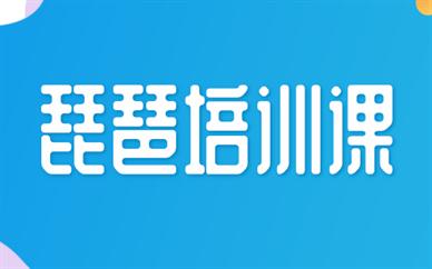 深圳南山琵琶兴趣班