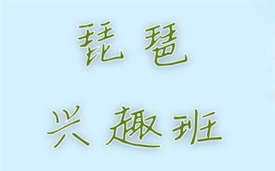广州琵琶培训课